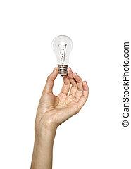 licht, hand holding, zwiebel