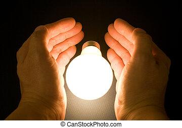 licht, hell, zwiebel, hand