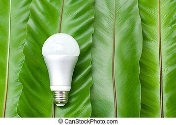 licht, leuchtdiode, zwiebel