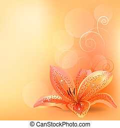 licht, pastellhintergrund, mit, orange lilie