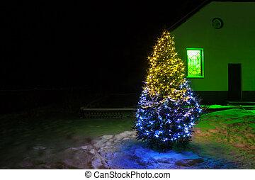 lichter, baum, weihnachten, nacht