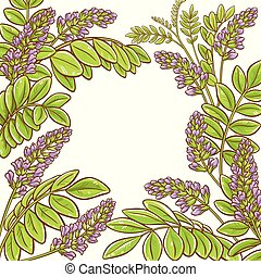 licorice plant vector frame on white background
