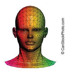 lidský, barvitý, head., vektor, ilustrace