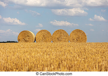 lie, stroh, ballen, nach, feld, korn, ernte, runder