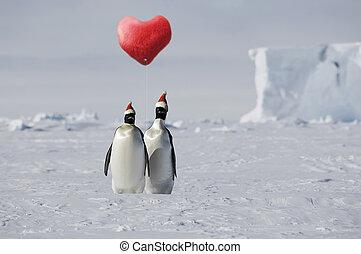 liebe, pinguin