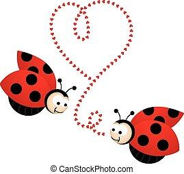 liefde, twee ladybirds, schattig