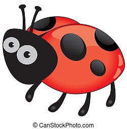 lieveheersbeest