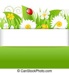 lieveheersbeest, gras, vellen, poster