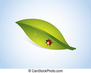 lieveheersbeest, vector, blad, achtergrond