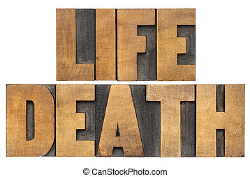 life and death isolated words in vintage letterpress wood type