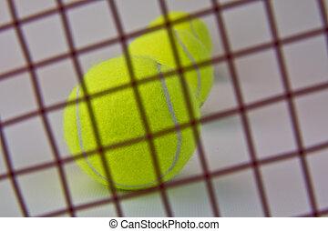 Life behind the Tennis Racquet