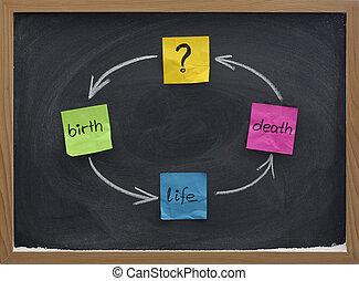 life cycle or reincarnation concept on blackboard - birth,...