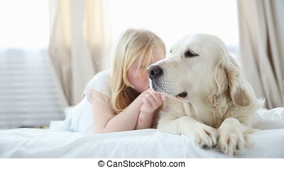 life of domestic pets in the family. a small blonde girl lies with her dog on the bed in the bedroom. a golden retriever is the best dog for children.