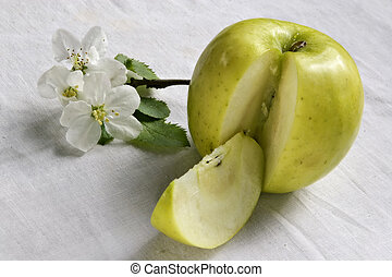 Life of green apple