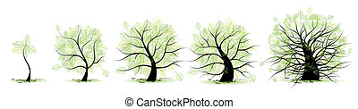 Life stages of tree: childhood, adolescence, youth, adulthood, old age