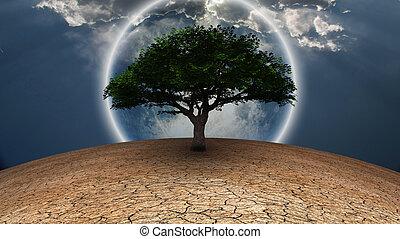 Life - Surrealism. Green tree in arid land. Full moon in...