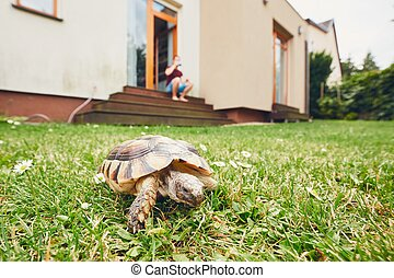 Life with domestic animals. Man resting and his turtle ...