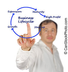 lifecycle,  Business
