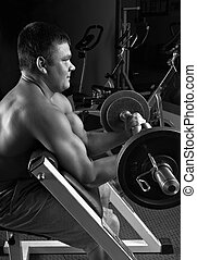 lifting weights - biceps exercise scott bench curl