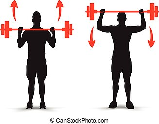 lifting weights infographics