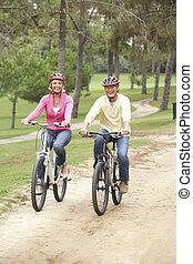 liget, párosít, bicikli, idősebb ember, lovaglás
