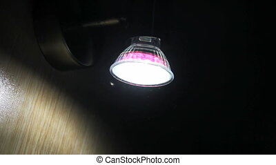 light and bug