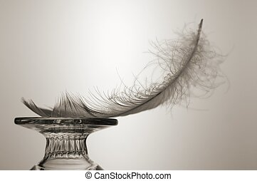 Light as a Feather - Feather balanced on glass object....