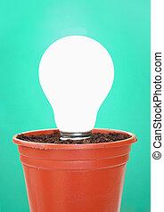 Light bulb in a plant pot