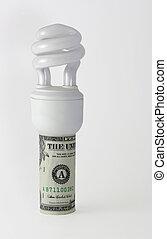 Light bulb in dollar bill