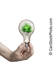 Light bulb in the hand