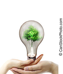 Light bulb in the hands