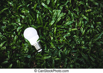 light bulb on green grass