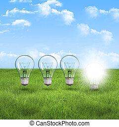light bulb on the green grass