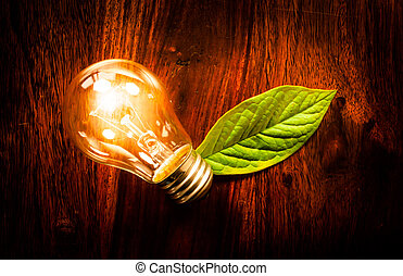 Light bulb with a leaf - Bright light bulb with a green leaf...