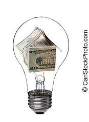 light bulb with dollar house