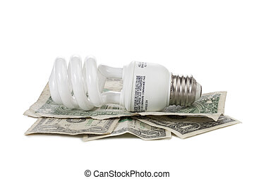 light bulb with dollars