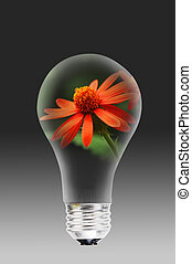 Light bulb with flower