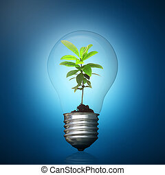 Light bulb with green plant inside