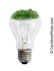 light bulb with green vegetation isolated on white background