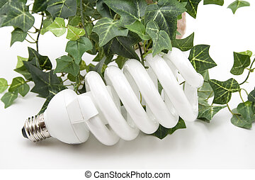 Light bulb with ivy plant