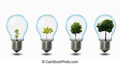 light bulb with nature - four light bulbs with nature...