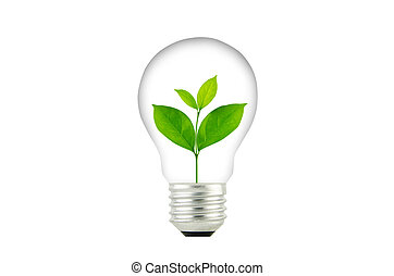Light Bulb with sprout inside plant