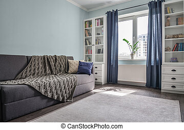 Light cozy teen room with white bookcases,  grey sofa and blue walls