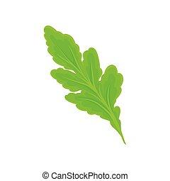 Light green leaf. Vector illustration on white background.
