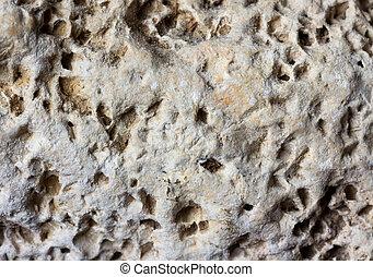 Light grey stone porous background texture limestone flagstone