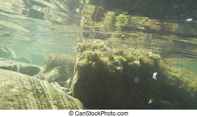 Light movement of the camera under water on a stony bank slow motion