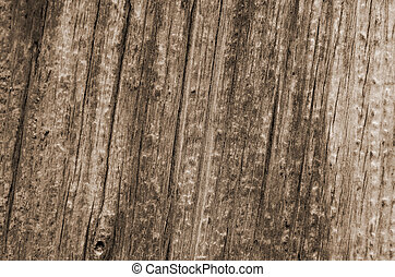 Light natural color of a wooden texture