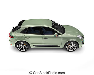 Light pastel green modern SUV - top down side view