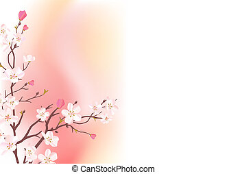 Light pink background with branch of blossoming tree