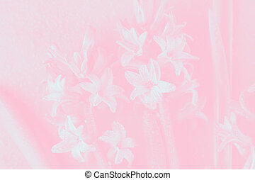 Light pink floral background with white hyacinth flowers pattern